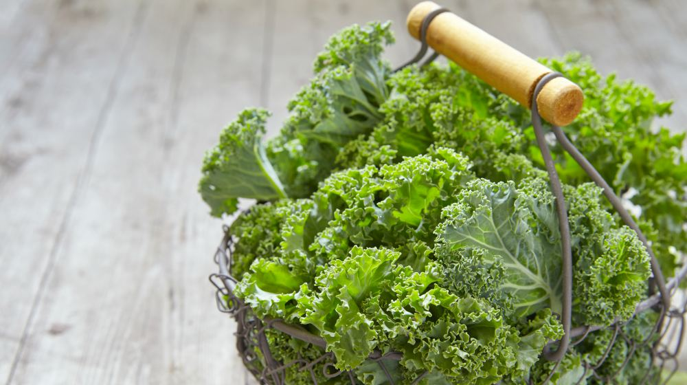 fresh green kale on wooden table | Spring Vegetable Garden Plants Perfect For Spring Growing Season | vegetable garden plants | plants to grow in spring