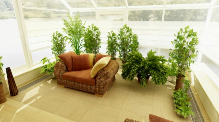 home sofa with indoor plants inside glass house green house | Indoor Winter Garden To Extend Growing And Harvest Season | winter garden | FEATURED