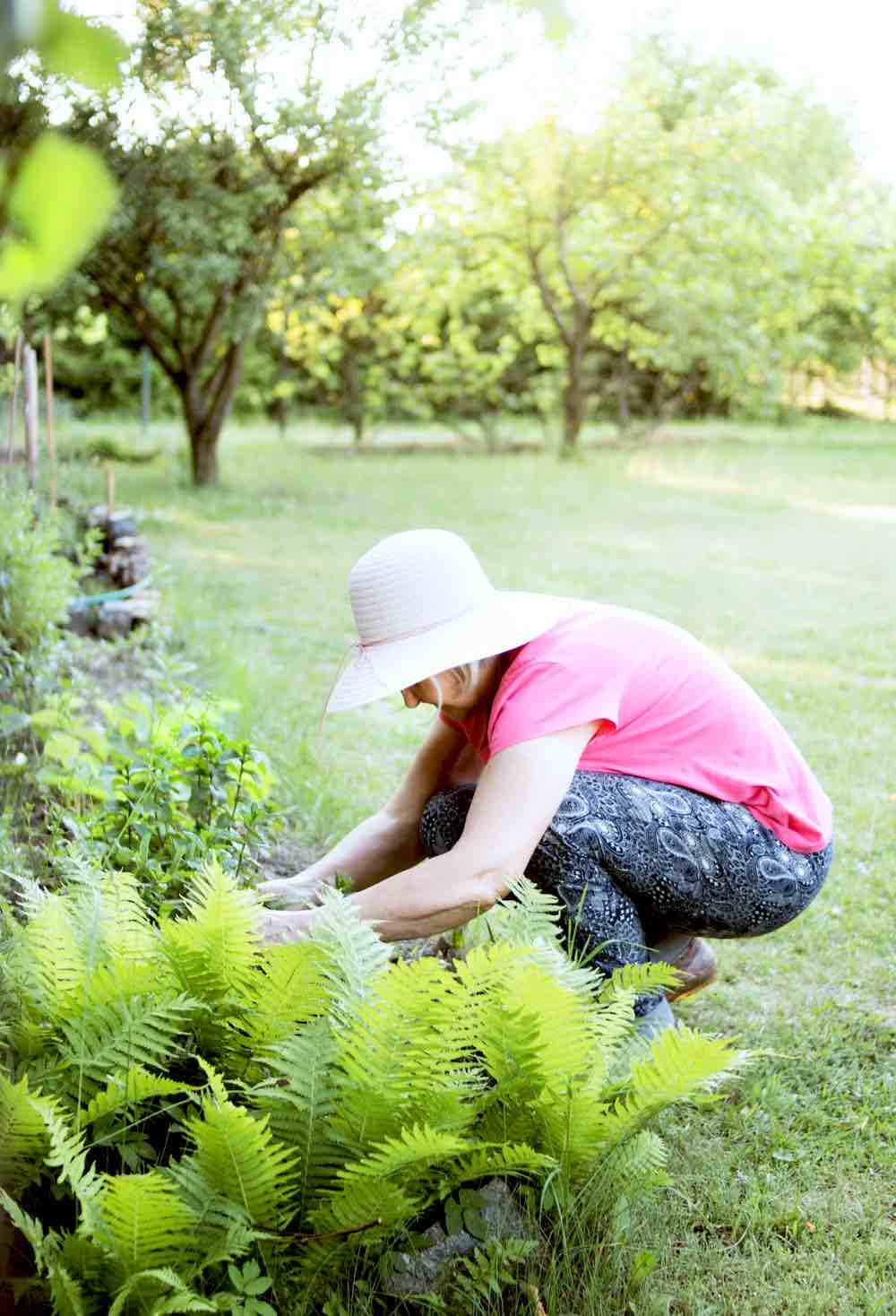 Woman Gardening Outdoor | Practical Gardening Skills Every Gardener Should Have Handy