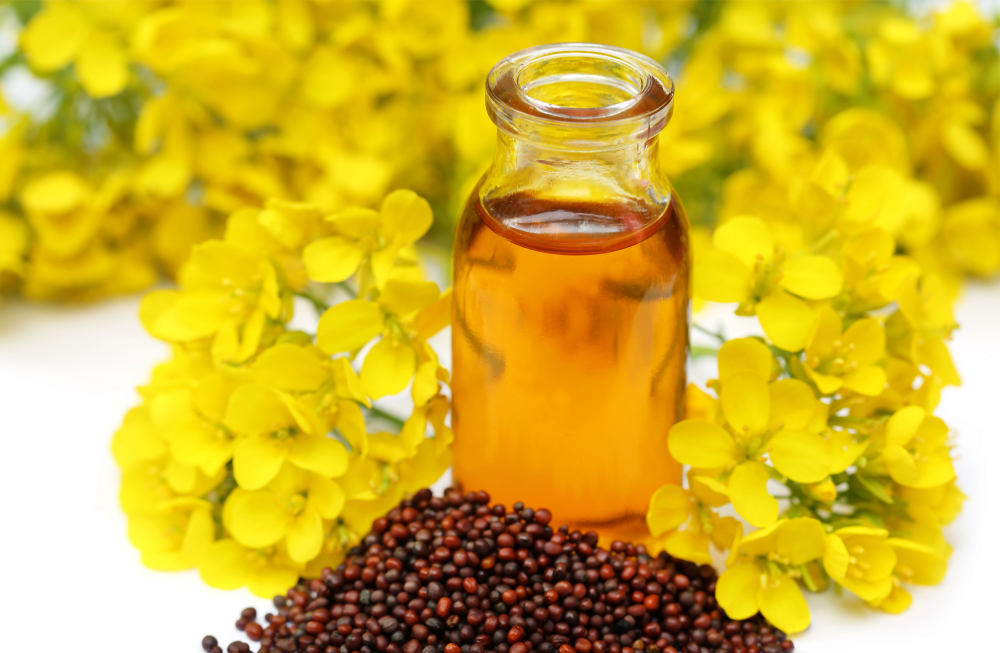 Mustard seed and oil | The Best Homemade Dog Repellent For Your Garden | repellent for dogs