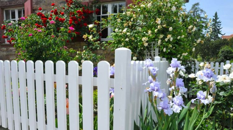 Small Garden With White Fence | Front Garden Ideas You Can Use For Small Spaces | Featured