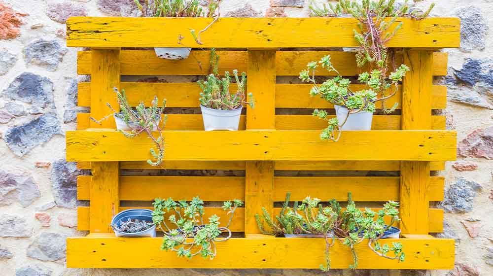 Wooden pallet attached to an old wall used as a flower vase | easy pallet garden ideas anyone can make | pallet garden wall | featured