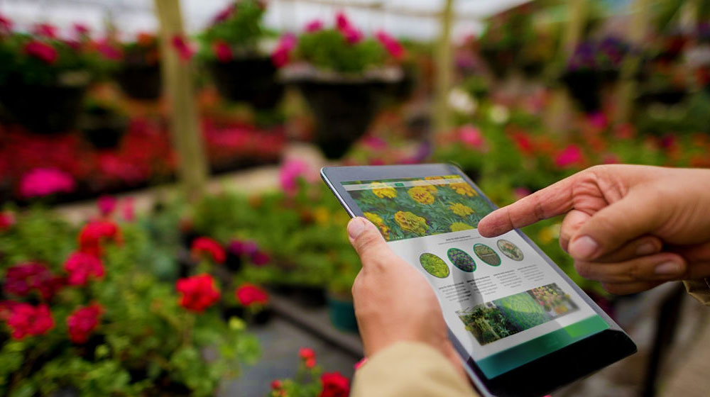 Using a tablet computer at a garden center | Best Gardening Apps You Need To Download Now | best gardening apps | featured