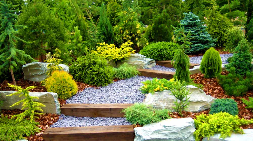 Designer garden with fresh plants and stones | Summer Landscape Ideas And Tips For Your Summer Garden | garden tips | featured