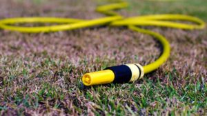 dry grass during a hot summer day | Ways To Revive Dead Grass And Bring Your Lawn Back To Life | lawn care | featured